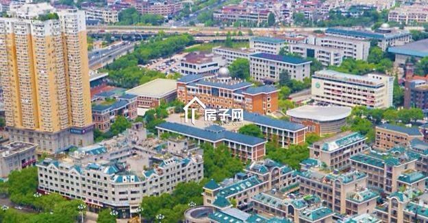 小学扩招12个班,540人!2019年义乌市中小学招生计划公布